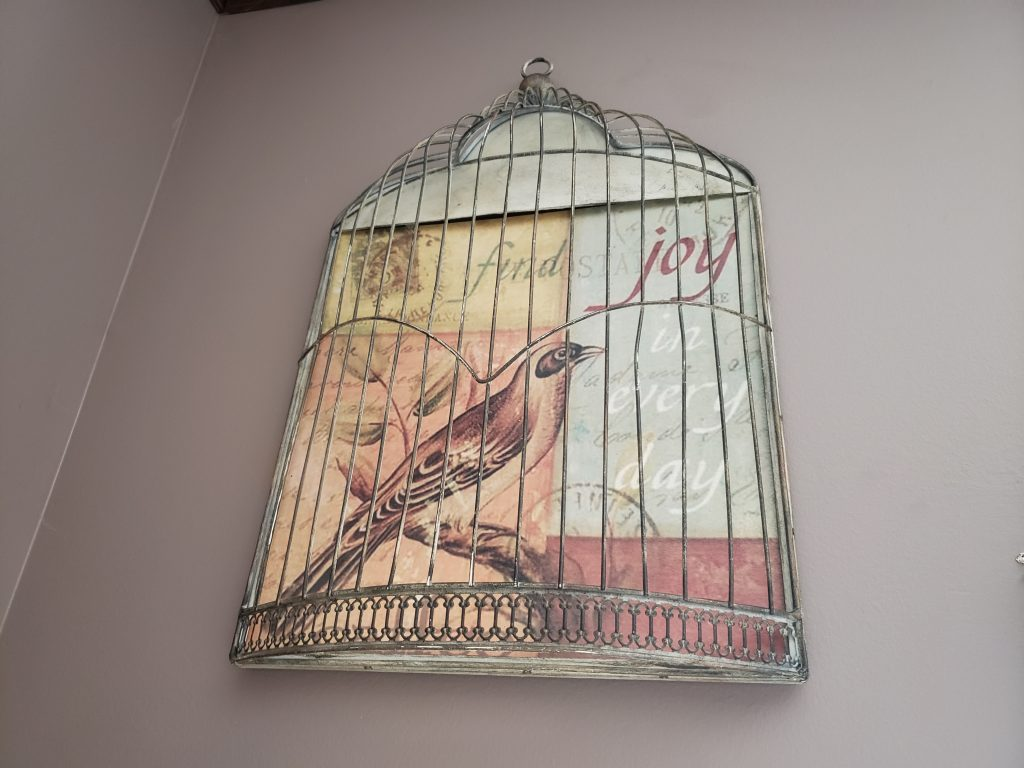 Wall sconce bird cage frame